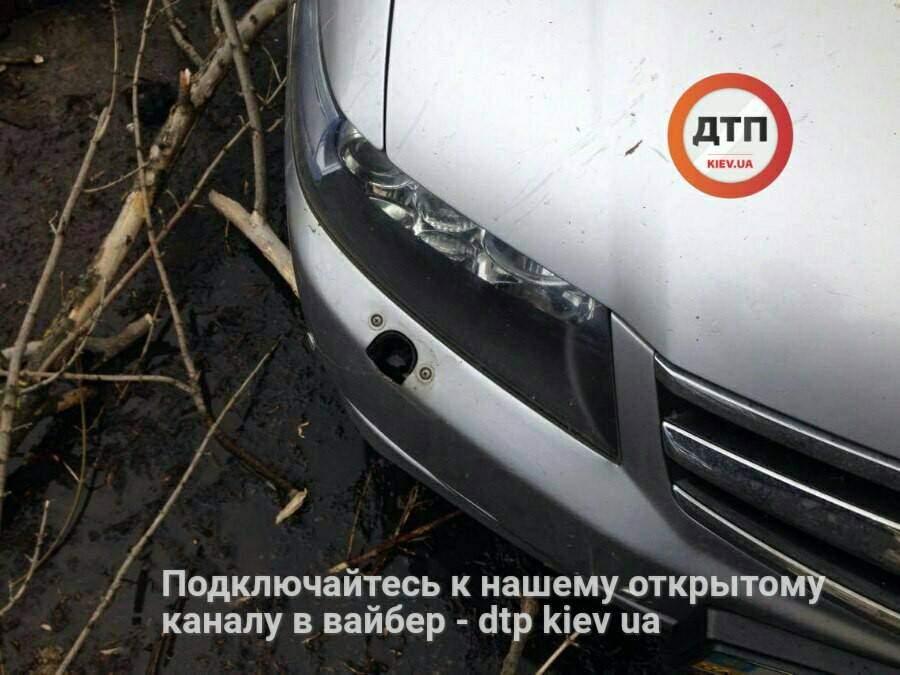В Киеве дерево помяло легковушку (Фото)