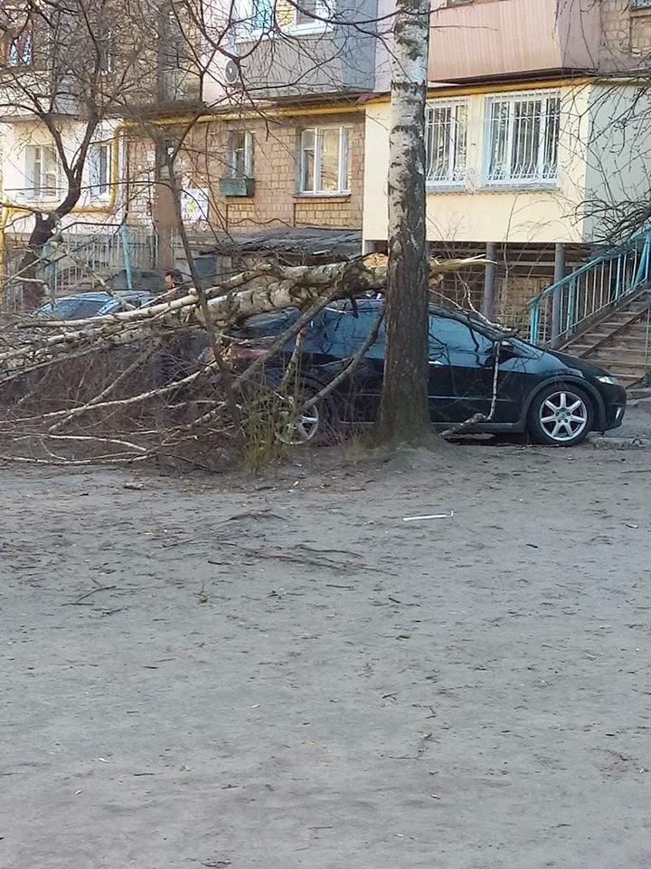 Последствия ураганного ветра в столице: отсутствие электричества, поваленные деревья и поврежденные автомобили (фото)