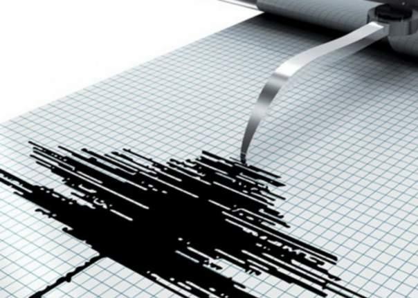 На Камчатке произошли десятки землетрясений