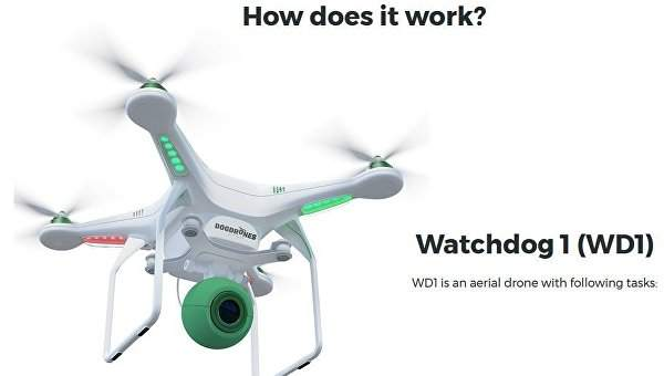 В Голландии дроны будут использывать для поиска собачьих фекалий