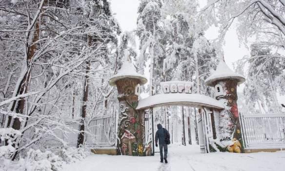 Последствия стихии на Слобожанщине: в Харькове без света остались детские сады и школы (фото)