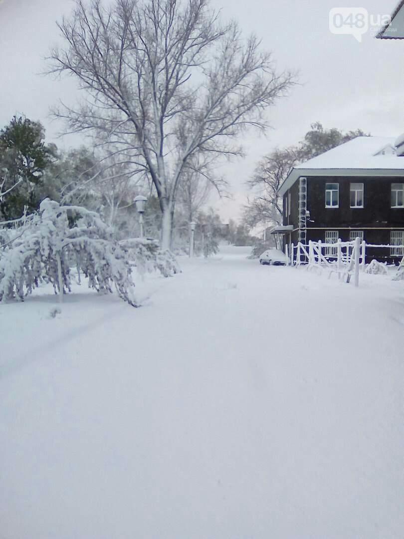 «Белый двор, белый сад, белые дорожки…» : жители Болграда вернулись в зиму (фото)