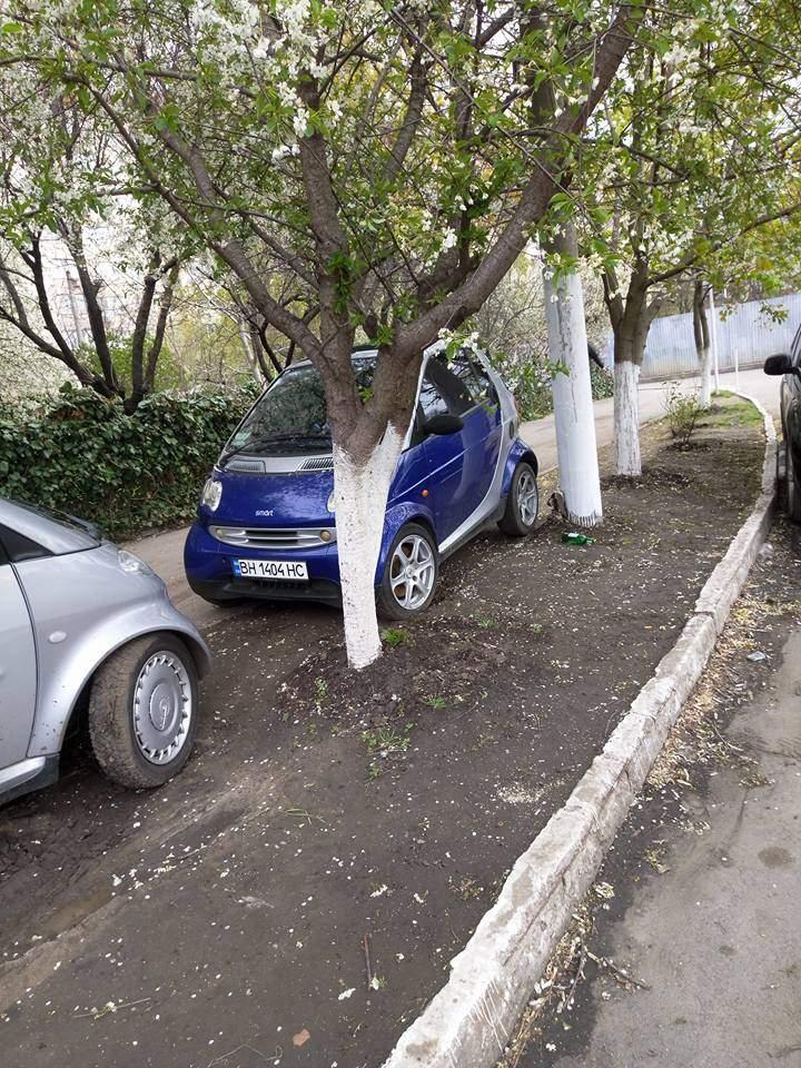 В Одессе очень маленькие машины паркуются, где хотят (Фото)