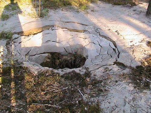 «Убивается украинская земля»: Береза показал янтарные «кратеры» (фото)
