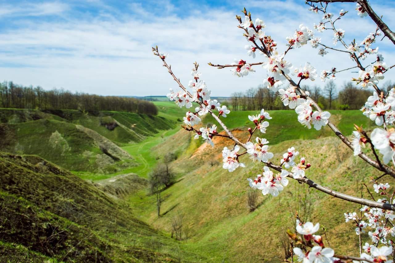 Урочище Шматово в Харьковской области привлекает туристов со всех уголков  Украины (Фото)
