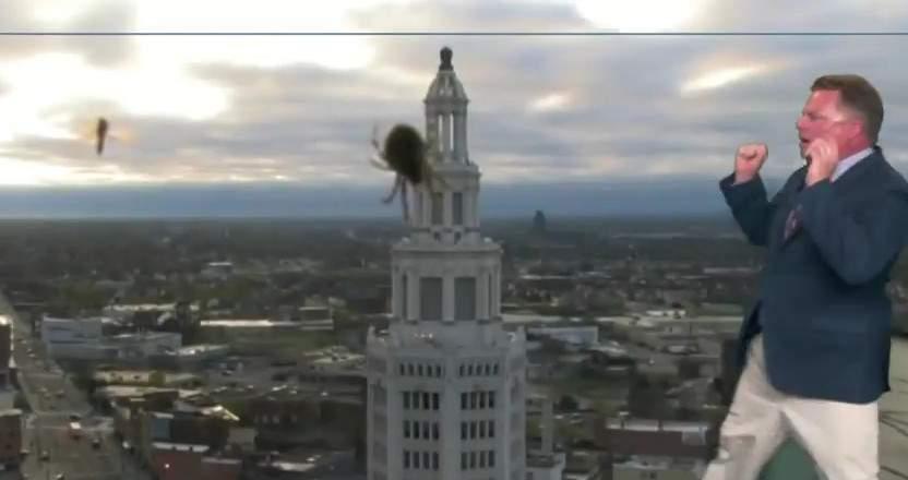 В Америке ведущий прогноза погоды испугался паука в прямом эфире (видео)