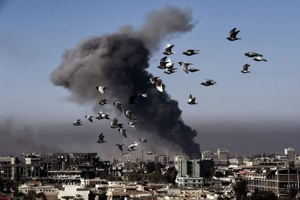 В Мосуле совершена атака на школу. Погиб 81 человек
