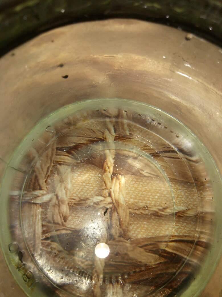 В Одессе из крана течёт вода с мазутом (фото)