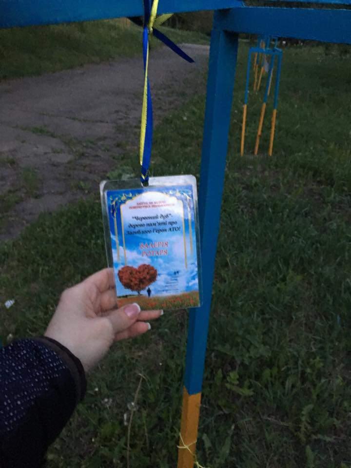 Осквернили память: в Черновцах неизвестные выкопали деревья с Аллеи памяти героев АТО (фото)