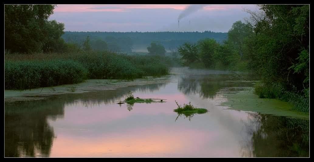 Харьковская природа с высоты птичьего полета (Видео)