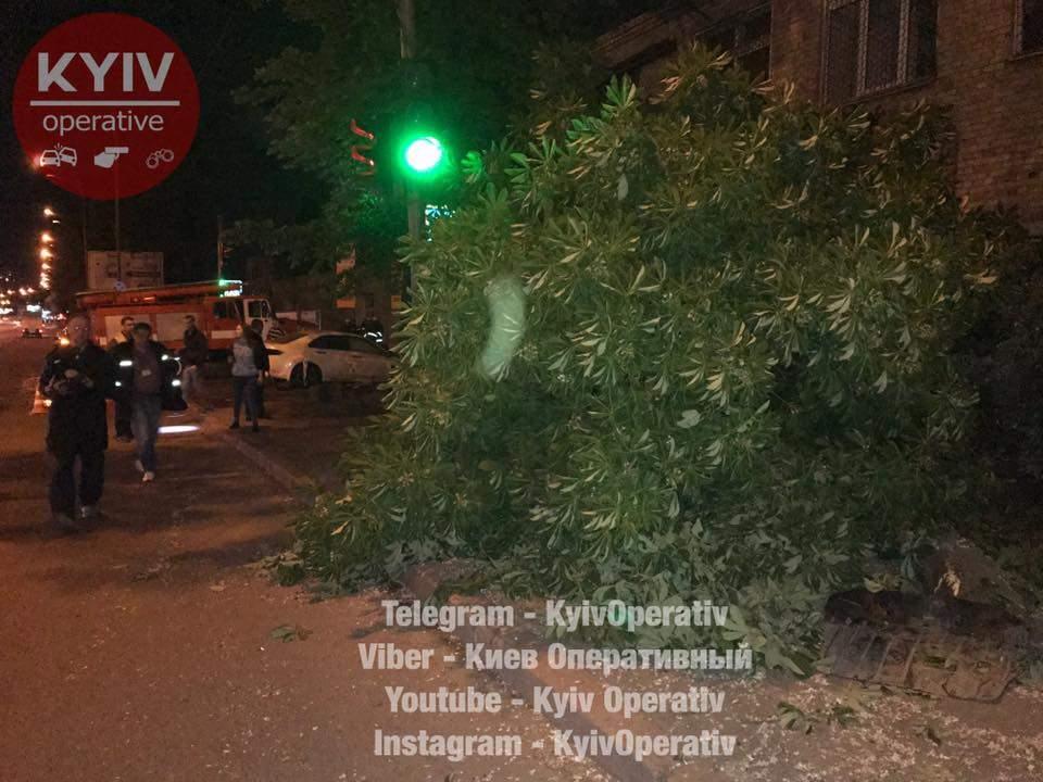 В Киеве пьяный гонщик влетел в штрафстоянку (Фото)