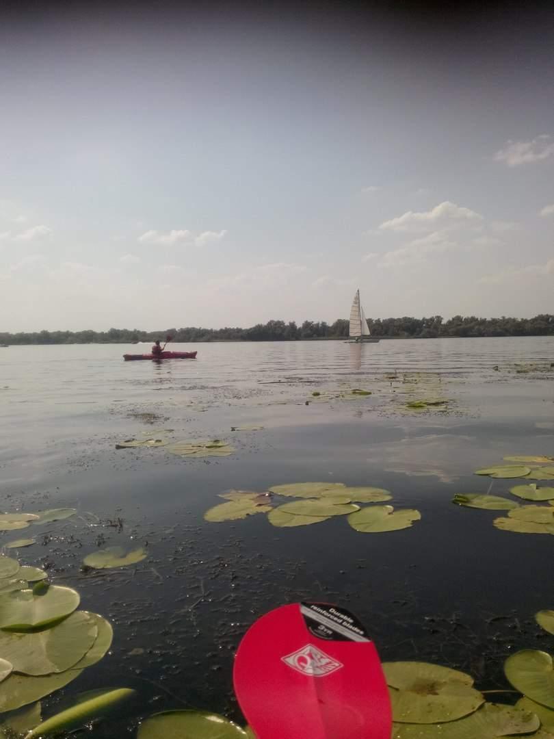 Прогулка по плавням Запорожья на лодке (Видео)