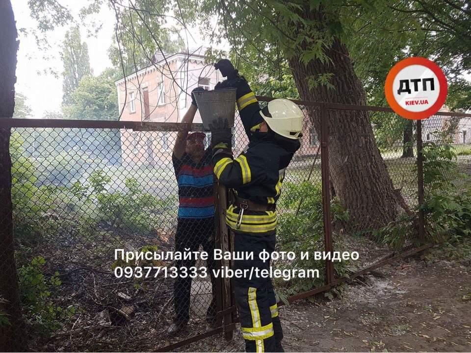 В Киеве загорелась мусорная свалка (фото)