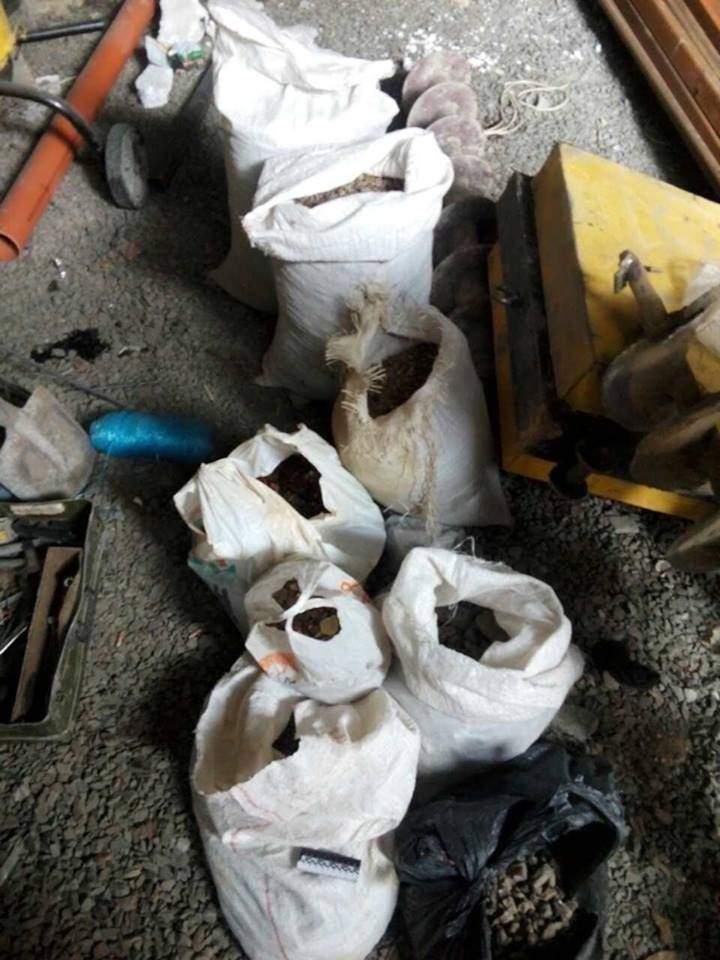 Из подпольных цехов в Волынской области изъяли несколько сотен килограммов янтаря (фото)