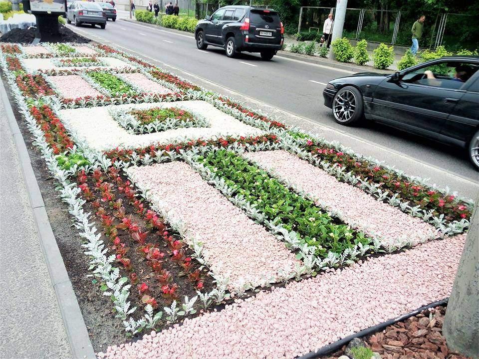 Во Львове высадили уникальную цветочную композицию (фото)