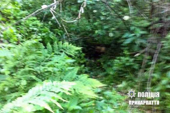 В Ивано-Франковской области мать убила грудного малыша