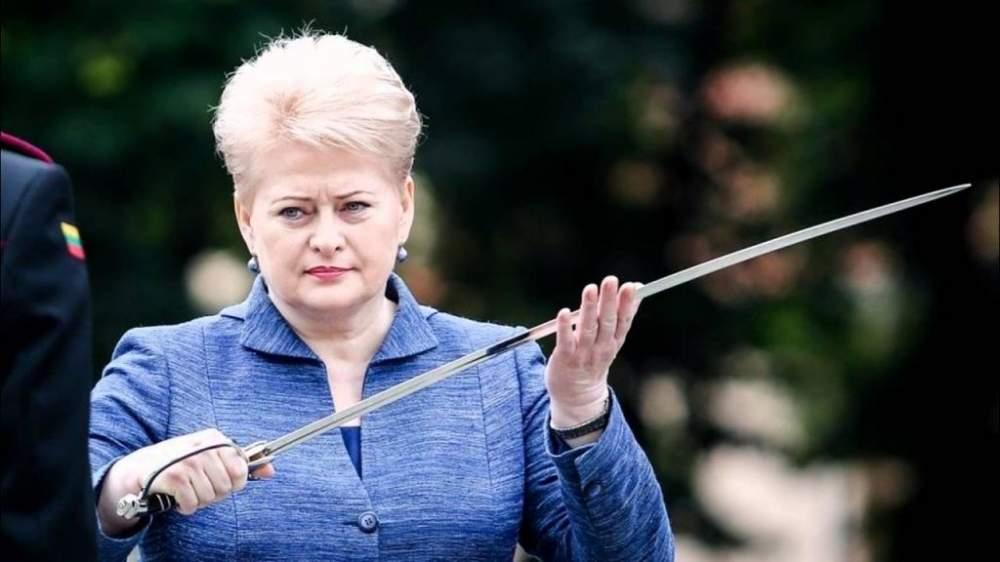 «Это охладит пыл агрессоров и протрезвит их»: президент Литвы рассказала, как защититься от угроз со стороны РФ