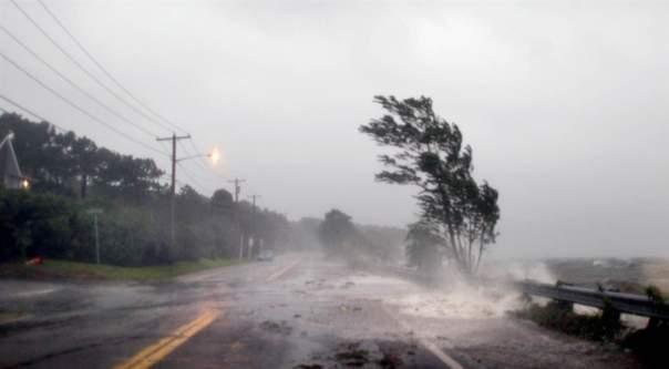 Ураган в Сумах повалил десятки деревьев
