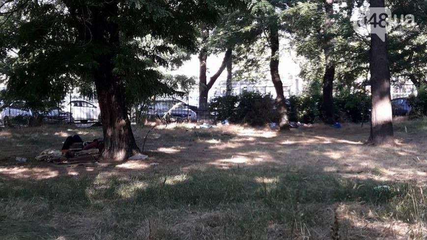 Возвращение непрошеных гостей: в Одессе Куликово поле заполонили бездомные (фото)