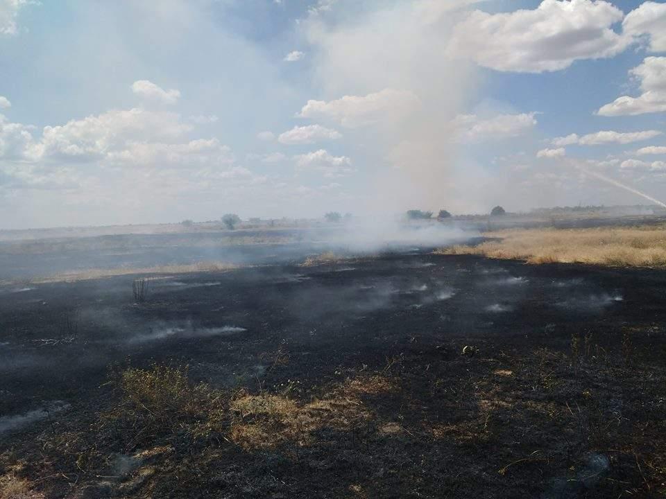 На Херсонщине несколько часов тушили возгорание сухостоя (Фото)