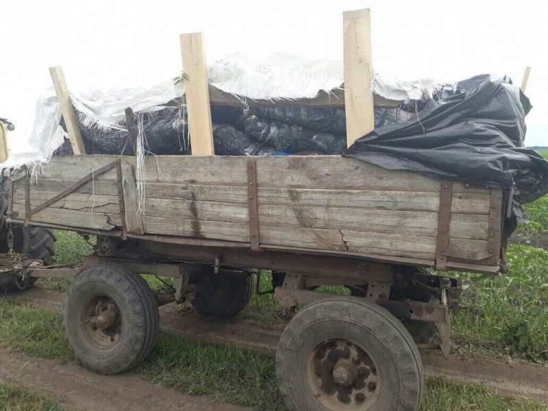 На Сумщине пограничники пресекли попытку контрабанды партии мяса в РФ (фото)