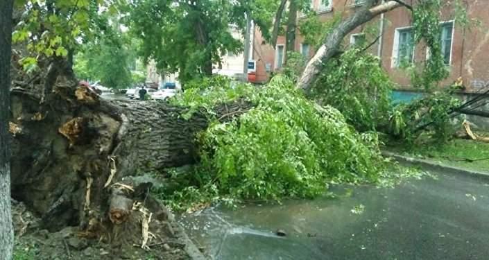 На Молдавию обрушился страшный ураган (видео)