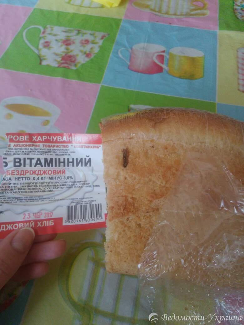 Фотофакт: в Виннице реализуют хлеб с насекомыми (фото)