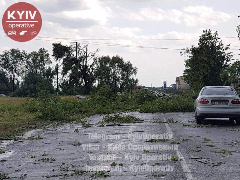 Мощным порывом ветра на Киевщине сорвало крыши домов и повалило билборды (Фото)