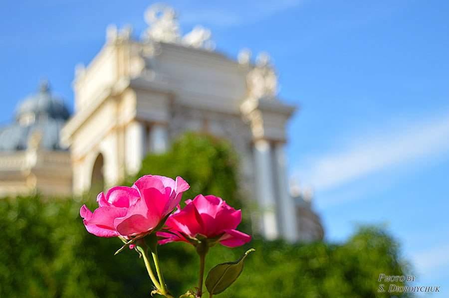 Невероятные снимки: Красота Одессы завораживает (Фото)