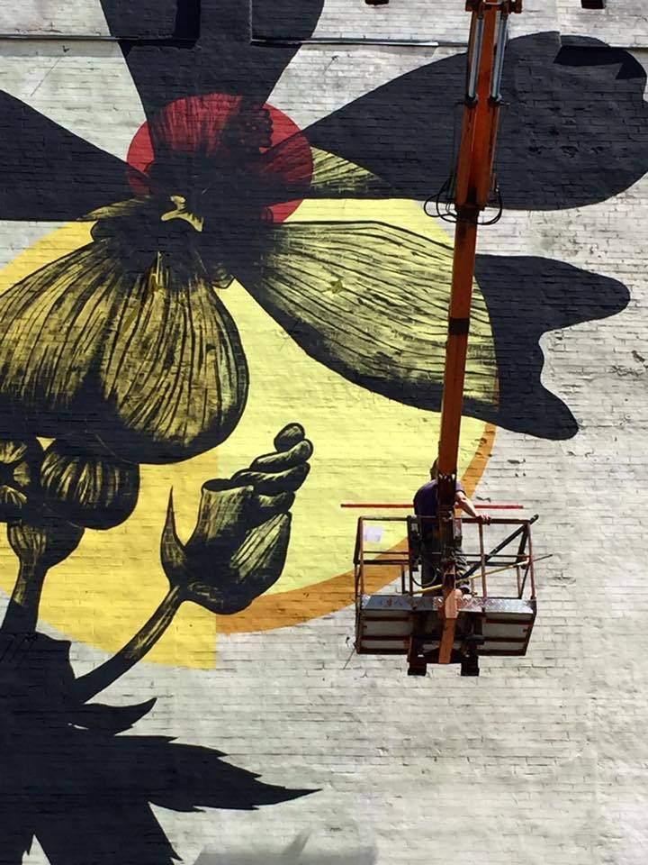В Киеве появился новый мурал с изображением Мальвы (фото)