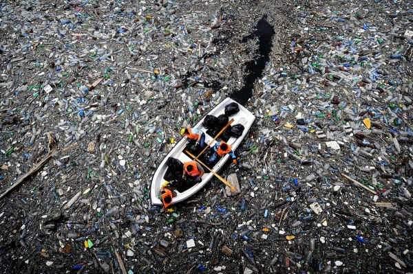 Тихий океан стал пристанищем для пластиковых отходов