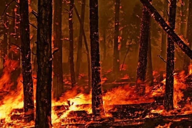 Масштабные пожары в Калифорнии представляют угрозу для 5 тысяч жителей