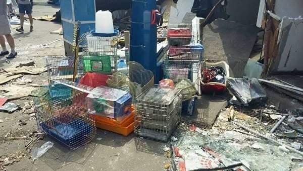 В результате погрома рынка в Киеве погибло множество животных (Фото)