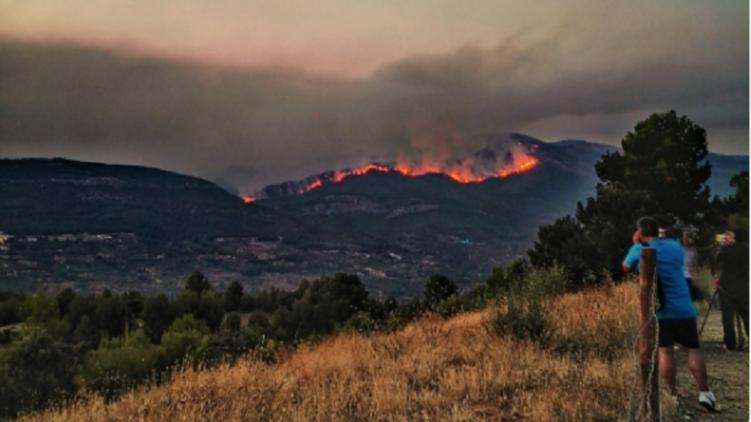В Испании на протяжении нескольких дней пытаются потушить лесные пожары