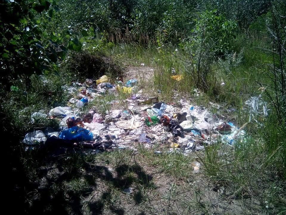 Жители Чернигова жалуются на свалки мусора у «Земснаряда» (фото)