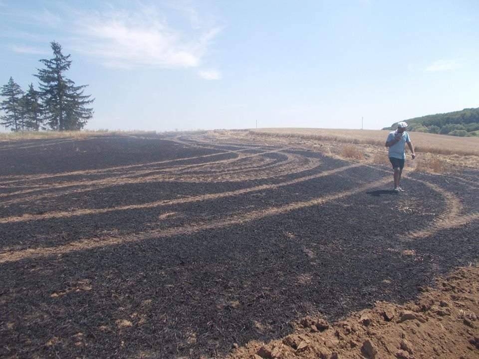 На Тернопольщине произошел масштабный пожар на пшеничном поле (Фото)