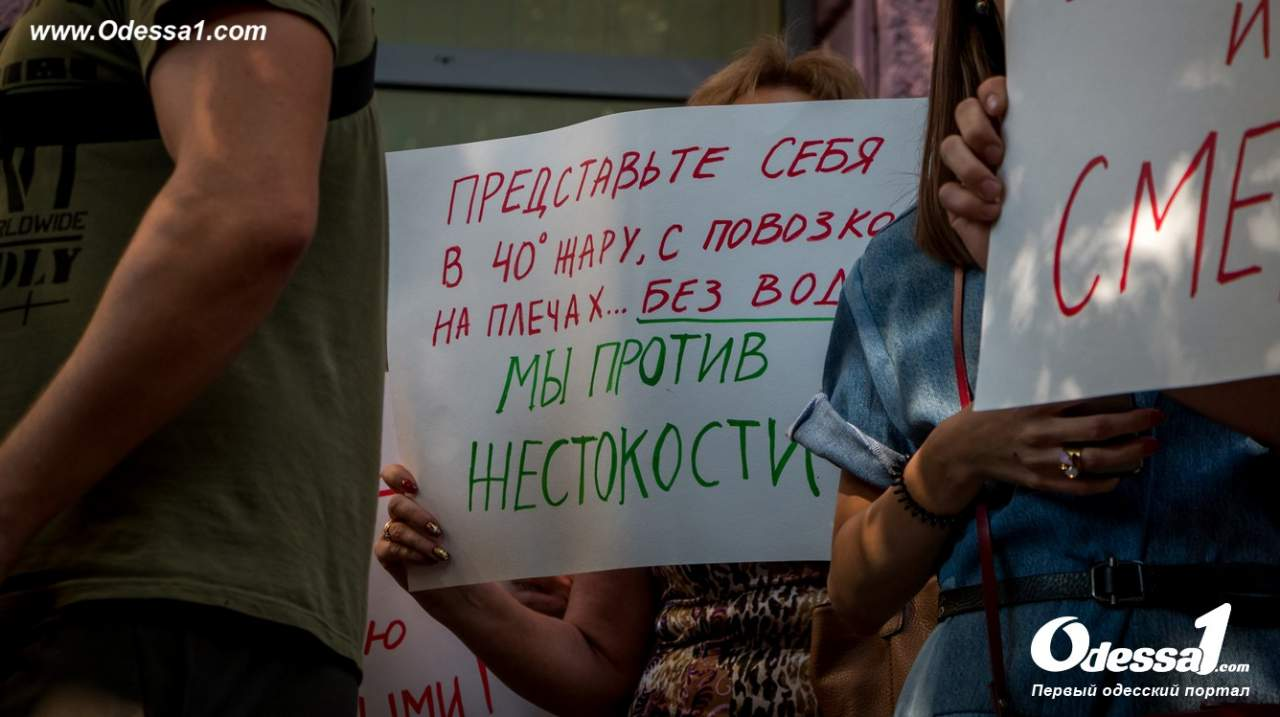 Труханов случайно наткнулся на толпу активистов, которые выразили ему ряд претензий (Видео)