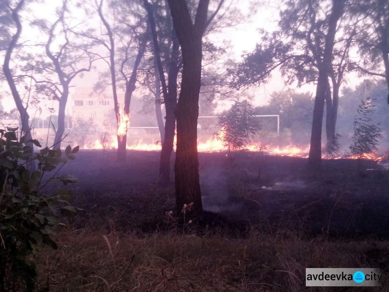 В Авдеевке загорелась территория школы (Фото)