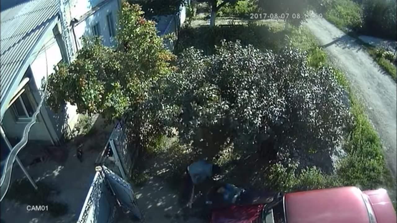 В Сети появилось видео избиения депутата Каменского горсовета (видео)
