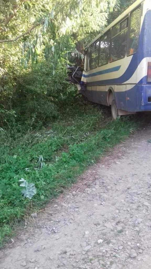 На Львовщине автобус въехал в дерево (Фото)