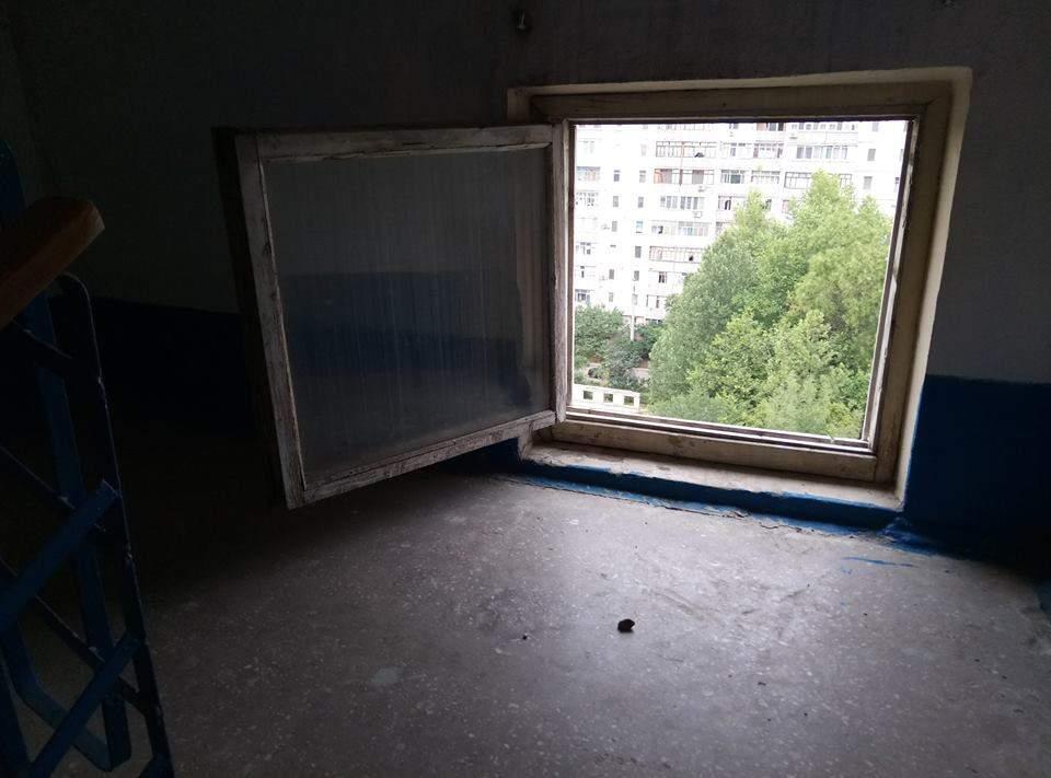 В Николаеве  с 9-го этажа одного из жилых домов выбросили бездомную собаку