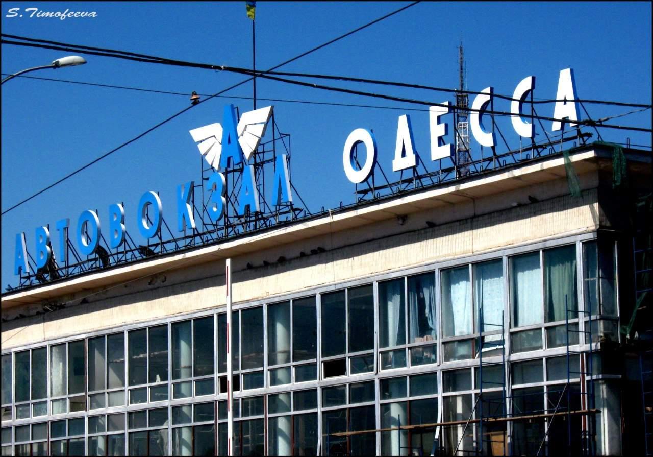 Чудесные летние пейзажи Одессы (Фото)