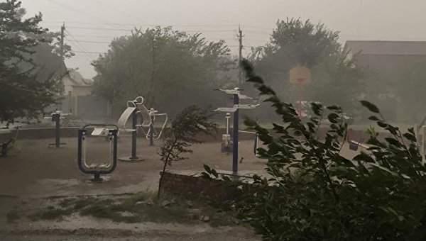 В Днепре из-за сильного ливня обрушены провода и повалены деревья (Фото)