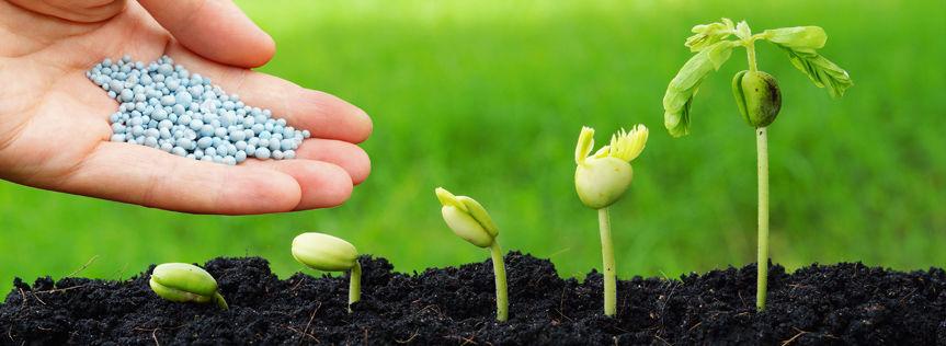 Поставки качественных удобрений сельскохозяйственным компаниям