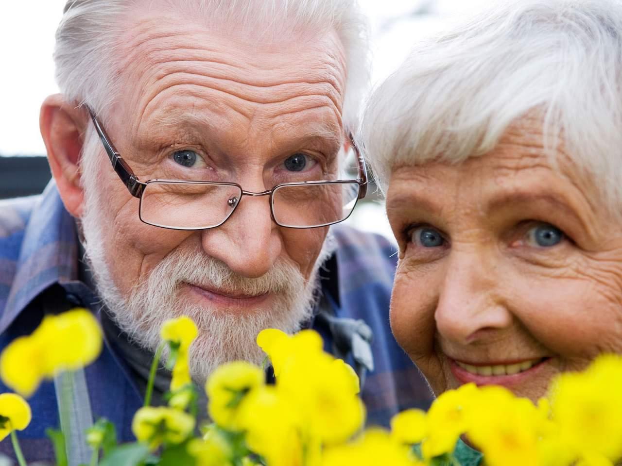 В Шотландии пенсионеры устроили дебош в отеле