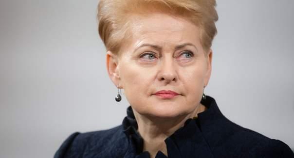 Грибаускайте сравнила действия РФ в Украине с Сирией и КНДР