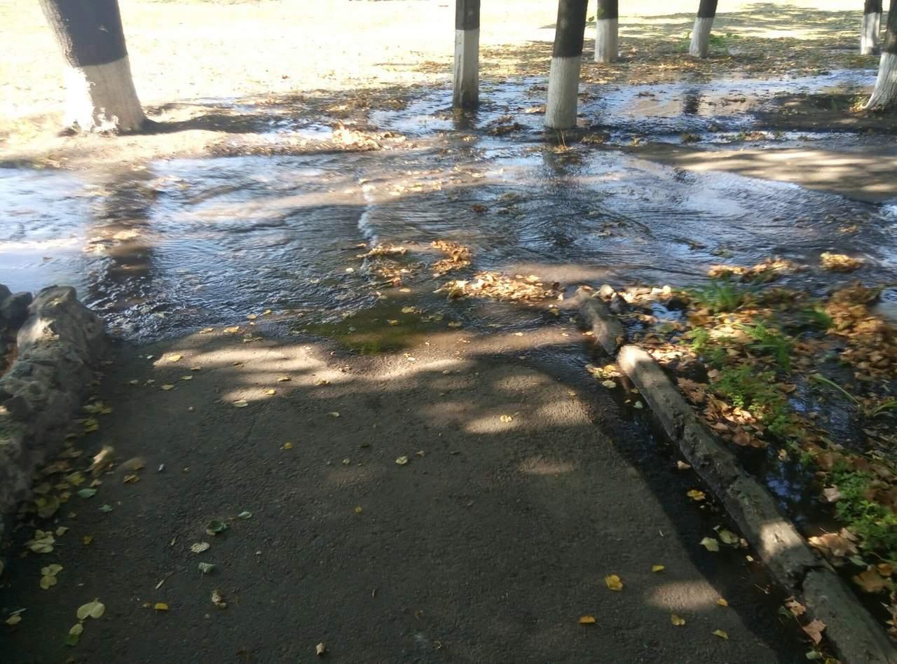 «Артезианская скважина»:  в Харькове  затопило проезжую часть (фото)