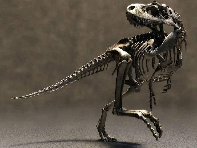 В Чехии обнаружили останки неизвестного до этого времени динозавра