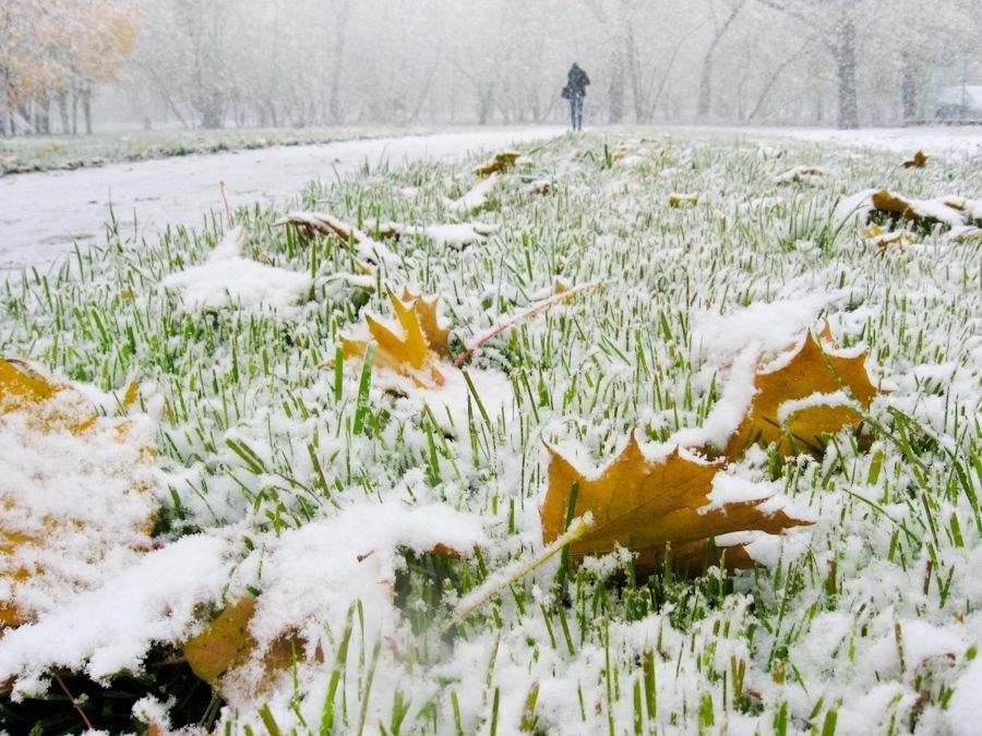 Зима в Украину может прийти уже в октябре