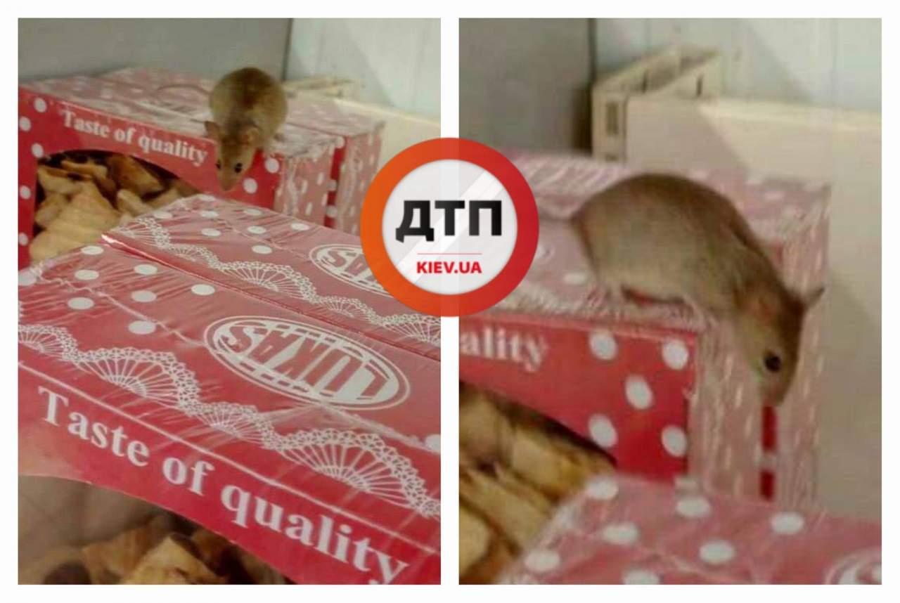 «Тест на качество»: на прилавках столичного «ЭКОмаркета» заметили мышь (фото)